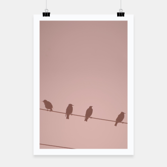 Birds on a wire Poster thumbnail image