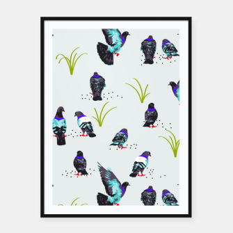 Thumbnail image of Pigeons Framed poster, Live Heroes