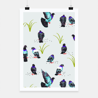 Thumbnail image of Pigeons Poster, Live Heroes