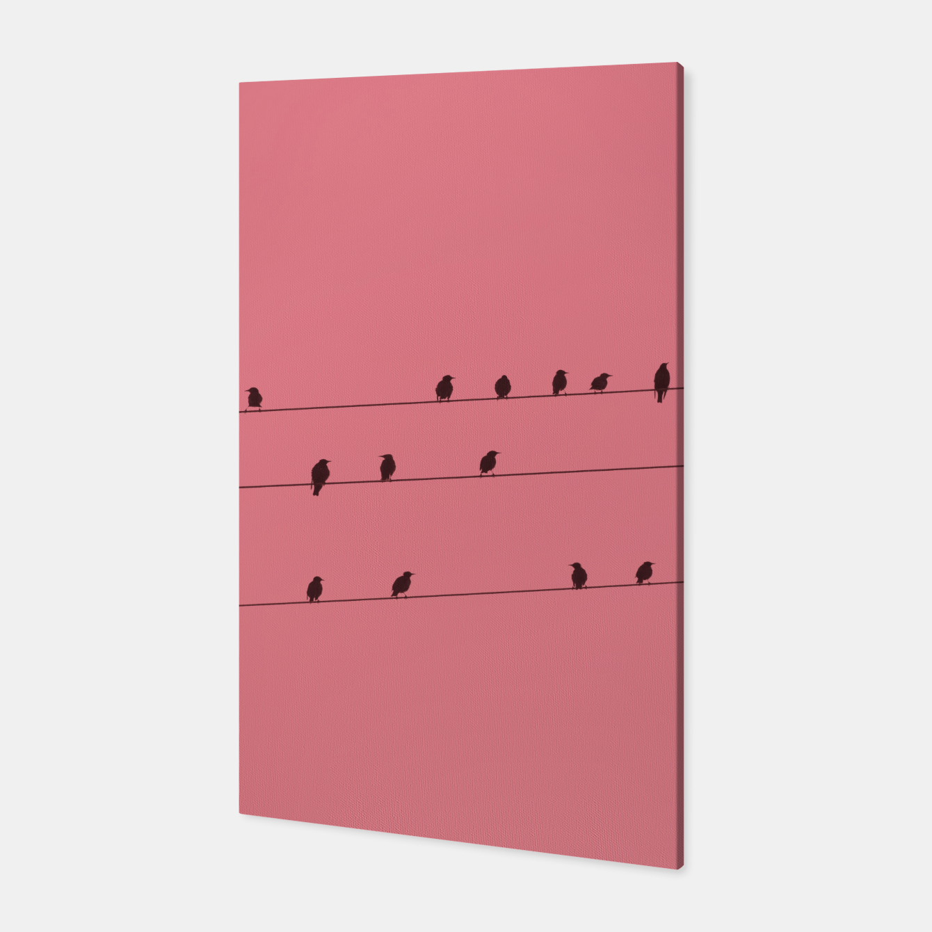 Foto Birds and wires Canvas - Live Heroes