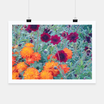 autumn flowers Plakat thumbnail image