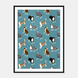Miniatur Australian Shepherd Pattern (Teal Background) Framed poster, Live Heroes