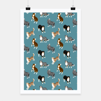 Miniatur Australian Shepherd Pattern (Teal Background) Poster, Live Heroes