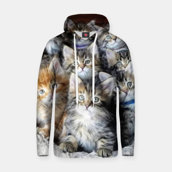 Miniatur Cat Kittys Best Photo New Design Women Men Girls Gift Hoodie, Live Heroes
