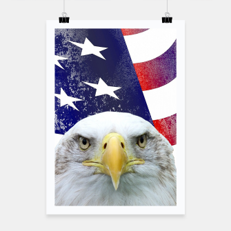 Miniatur American Flag and Bald Eagle Poster, Live Heroes