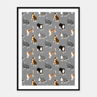 Australian Shepherd Pattern (Grey Background) Framed poster thumbnail image