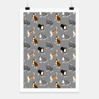 Thumbnail image of Australian Shepherd Pattern (Grey Background) Poster, Live Heroes