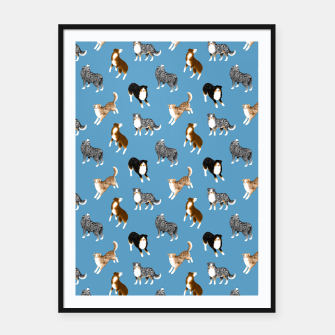 Thumbnail image of Australian Shepherd Pattern (Blue Background) Framed poster, Live Heroes