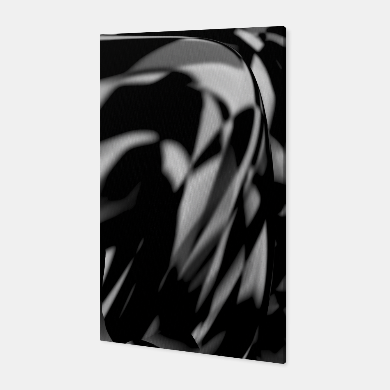 Image of B&W Canvas - Live Heroes