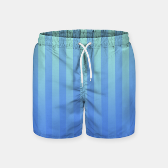 Gradient Stripes Pattern tb Swim Shorts thumbnail image