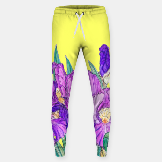 Thumbnail image of Flower-de-luce in yellow Sweatpants, Live Heroes