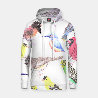 Miniatur Various birds stained glass art  Hoodie, Live Heroes