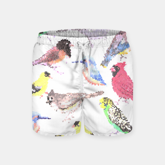 Miniatur Various birds stained glass art  Swim Shorts, Live Heroes
