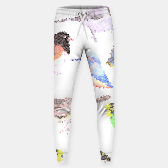 Miniatur Various birds stained glass art  Sweatpants, Live Heroes