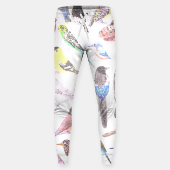 Miniatur Birds of America- pets and wild birds Sweatpants, Live Heroes