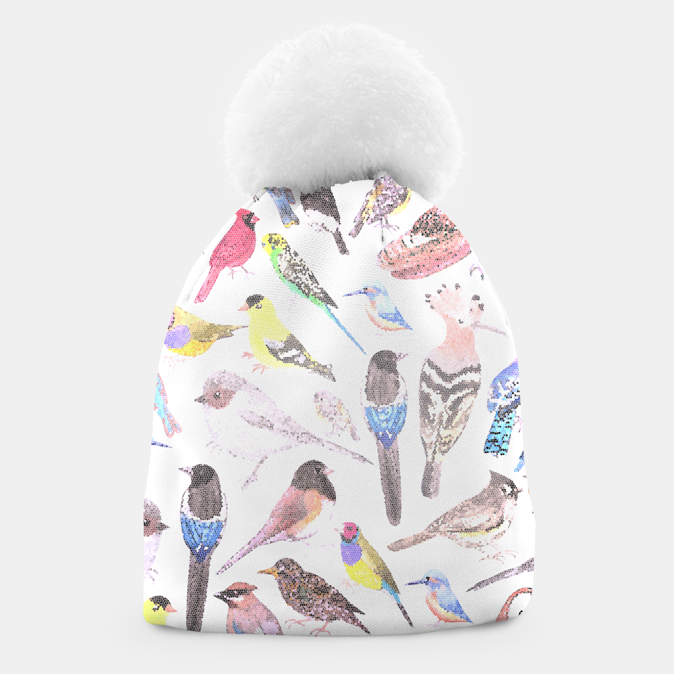 Image of Birds of America- pets and wild birds Beanie - Live Heroes
