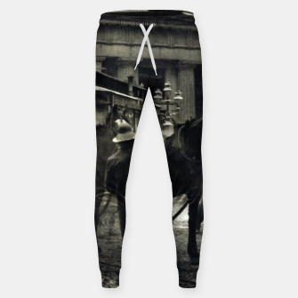 Thumbnail image of Photo of Alfred Stieglitz - The terminal 1892 Sweatpants, Live Heroes