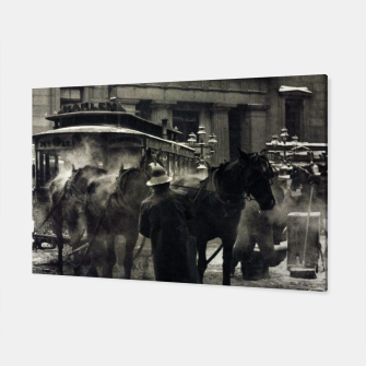 Thumbnail image of Photo of Alfred Stieglitz - The terminal 1892 Canvas, Live Heroes