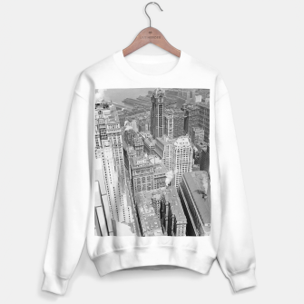 Buildings New York berenice Sweater regular obraz miniatury
