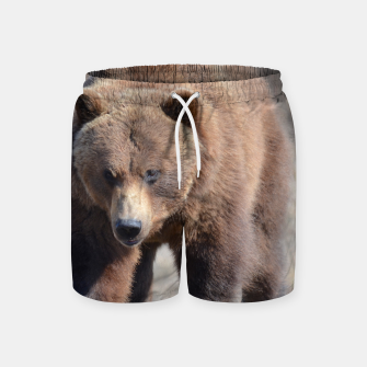 Thumbnail image of Alaskan Grizzly - Spring Swim Shorts, Live Heroes