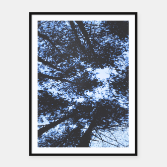 Thumbnail image of Looking Up At Trees Framed poster, Live Heroes