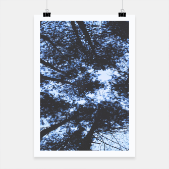 Thumbnail image of Looking Up At Trees Poster, Live Heroes