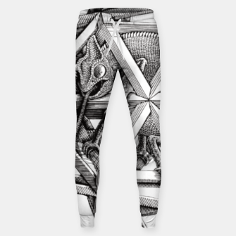 Miniaturka Fashion art and decor items of MC Escher Kaleidoscope Chameleon in a cage Sweatpants, Live Heroes