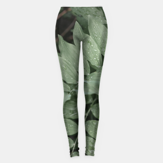Thumbnail image of Green leaf Legginsy, Live Heroes