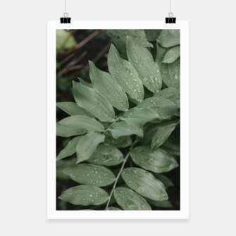 Thumbnail image of Green leaf Plakat, Live Heroes