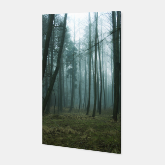 Forest II Canvas thumbnail image