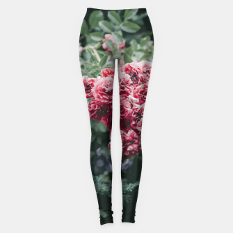 Red flowers Legginsy thumbnail image
