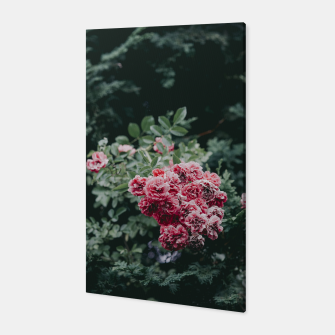 Red flowers Canvas thumbnail image