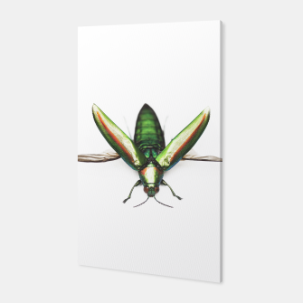 Thumbnail image of Bug Canvas, Live Heroes