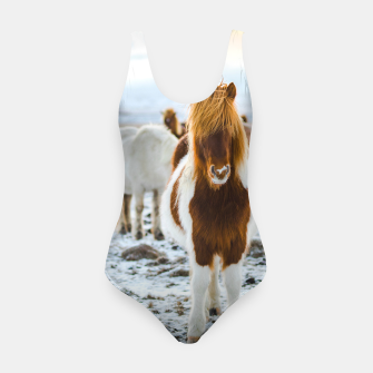 Thumbnail image of horse, Live Heroes