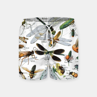 Fashion and of an Illustration Map with Insects, from Larouse Encyclopedia Swim Shorts Bild der Miniatur