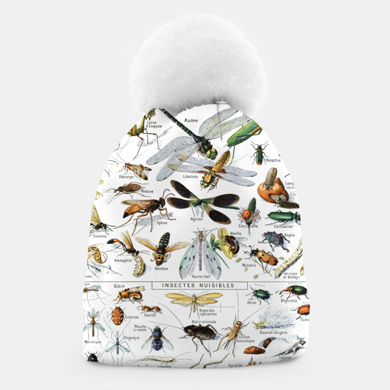 Foto Fashion and of an Illustration Map with Insects, from Larouse Encyclopedia Beanie - Live Heroes