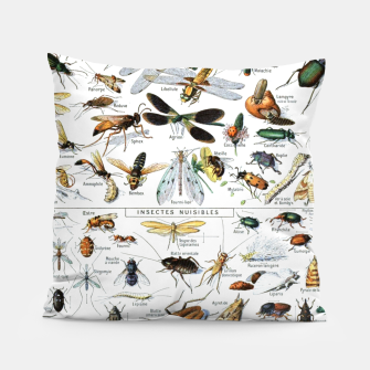 Fashion and of an Illustration Map with Insects, from Larouse Encyclopedia Pillow Bild der Miniatur