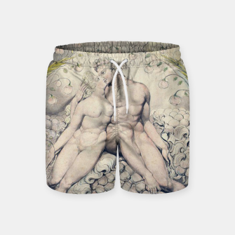 Miniatur Fashion items of William Blake Watercolour- Paradise Lost Swim Shorts, Live Heroes