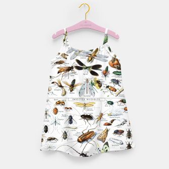 Fashion and of an Illustration Map with Insects, from Larouse Encyclopedia Girl's dress Bild der Miniatur