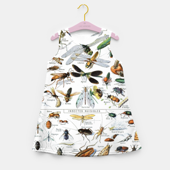 Fashion and of an Illustration Map with Insects, from Larouse Encyclopedia Girl's summer dress Bild der Miniatur