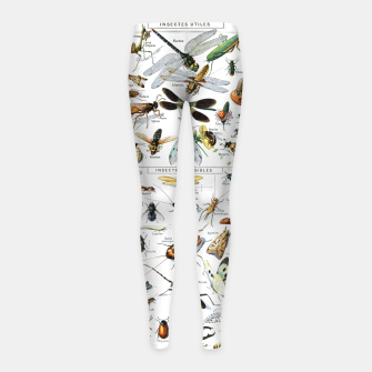 Fashion and of an Illustration Map with Insects, from Larouse Encyclopedia Girl's leggings Bild der Miniatur