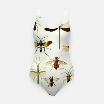 Fashion art of a illustration from a Encyclopedia about Insects Swimsuit Bild der Miniatur