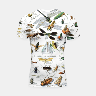 Fashion and of an Illustration Map with Insects, from Larouse Encyclopedia Shortsleeve rashguard Bild der Miniatur