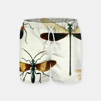 Fashion art of a illustration from a Encyclopedia about Insects Swim Shorts Bild der Miniatur