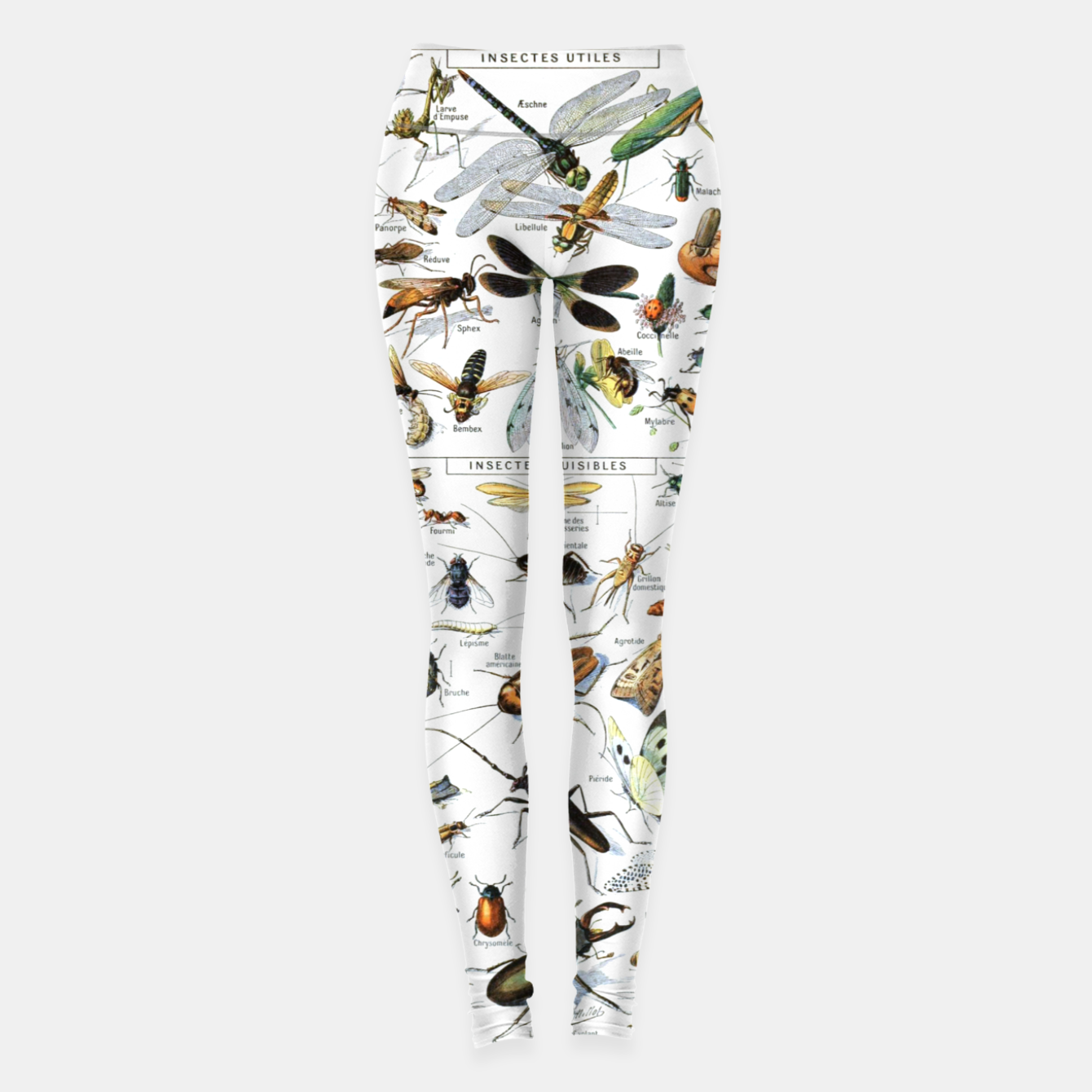 Foto Fashion and of an Illustration Map with Insects, from Larouse Encyclopedia Leggings - Live Heroes