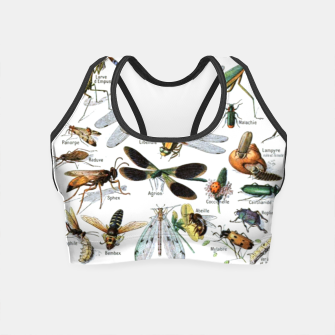 Fashion and of an Illustration Map with Insects, from Larouse Encyclopedia Crop Top Bild der Miniatur