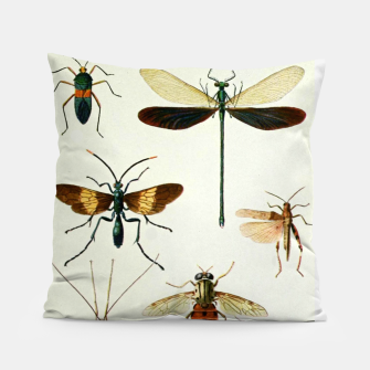 Fashion art of a illustration from a Encyclopedia about Insects Pillow Bild der Miniatur