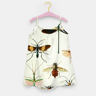 Fashion art of a illustration from a Encyclopedia about Insects Girl's dress Bild der Miniatur