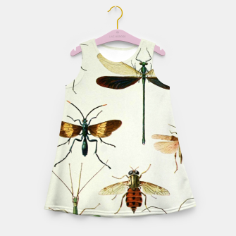 Fashion art of a illustration from a Encyclopedia about Insects Girl's summer dress Bild der Miniatur