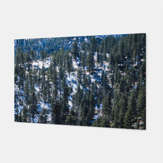 Thumbnail image of Snow dusted trees, Live Heroes
